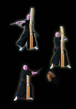 Additional photos: Samurai Fencing Book Battodo - polish language